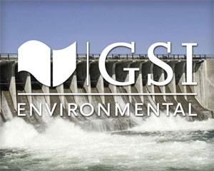 GSI Environmental